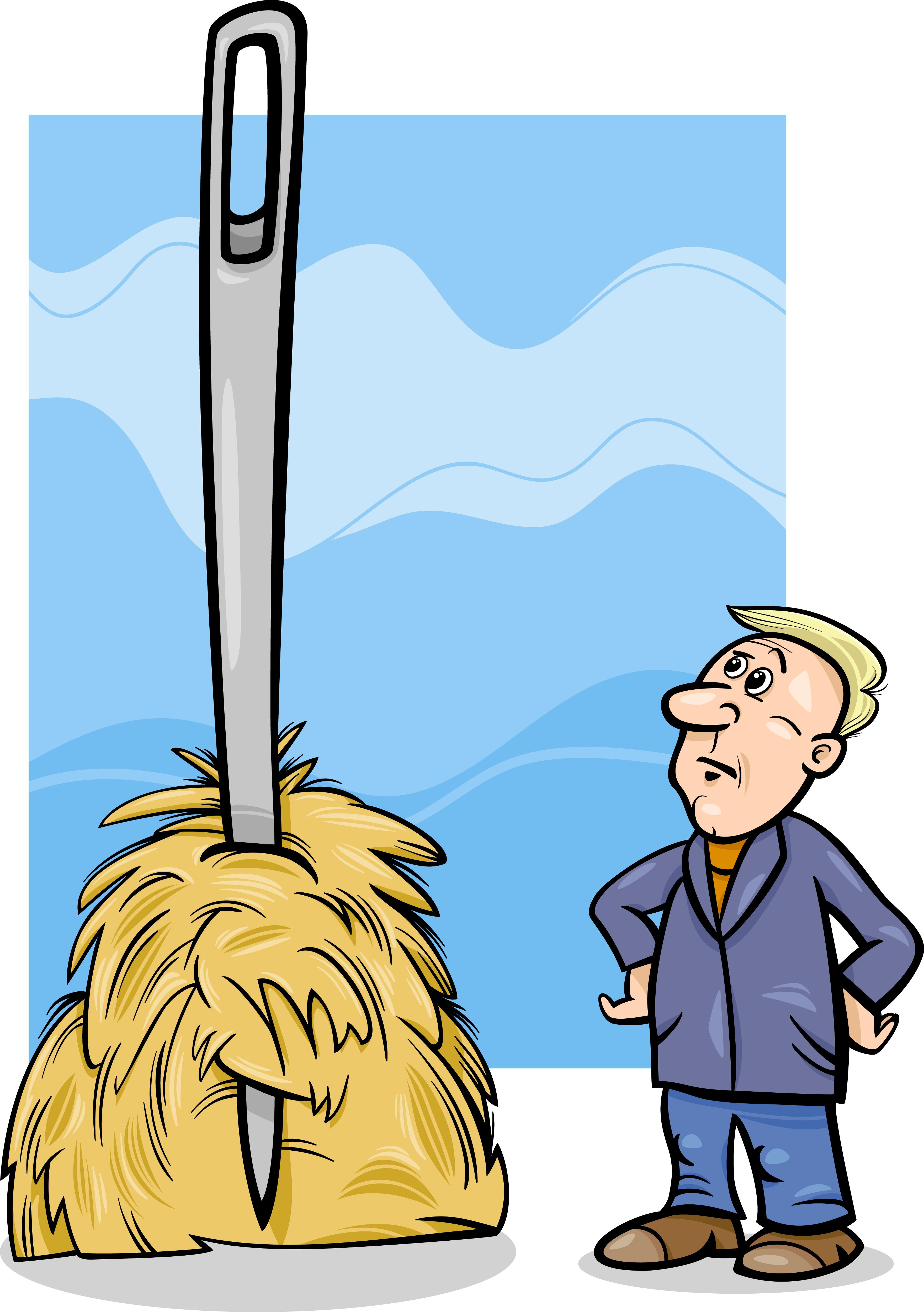 Needle in haystack image